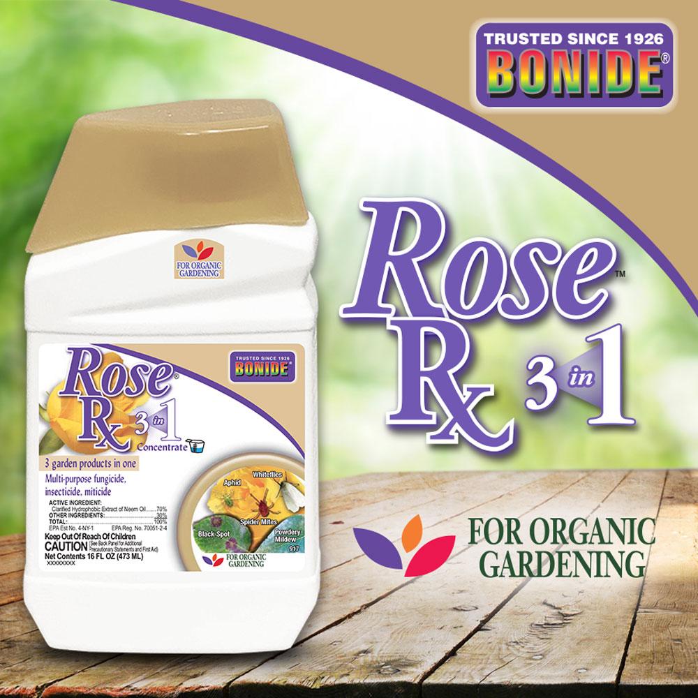Rose Rx® 3-in-1 Conc