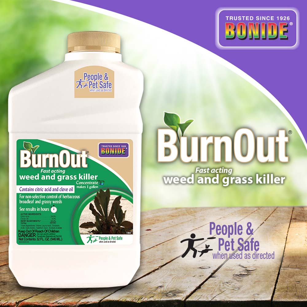 BurnOut® Fast-Acting Weed & Grass Killer Conc