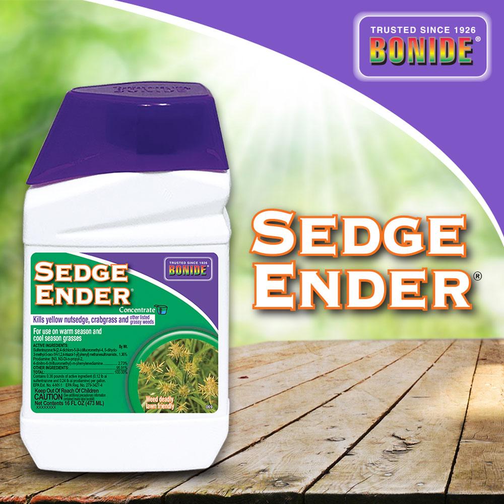 Sedge Ender® Conc