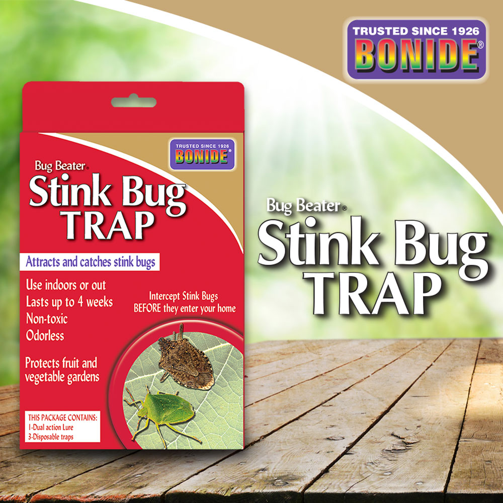 Stink Bug Traps