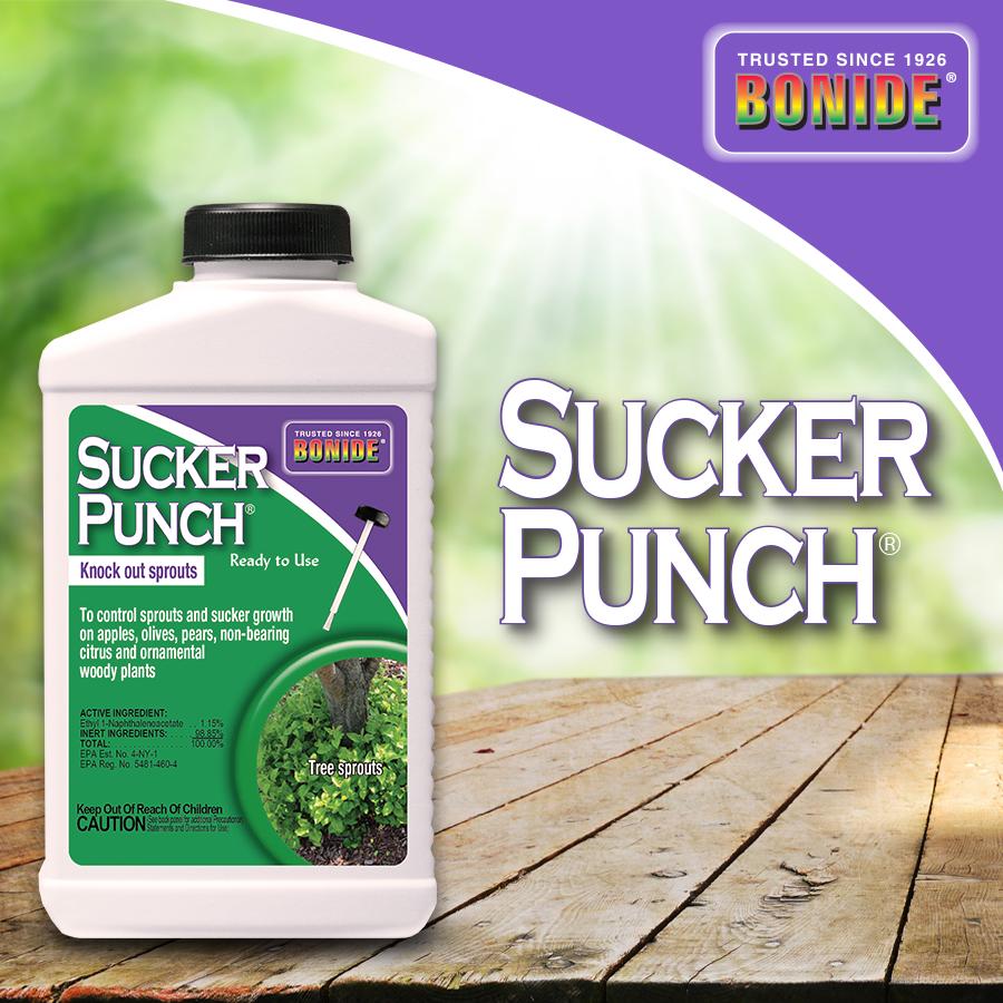 Sucker Punch® RTU